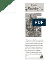 6_mulching.pdf