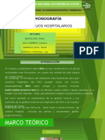 Diapositivas de La Monografia Lunes