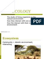 01 Ecology