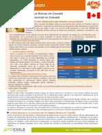 FMP Canada Abejas 2015