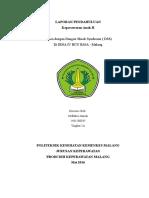 LAPORAN PENDAHULUAN DSS.doc