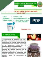 Beneficio de Cosecha y Pos Cosecha