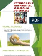 Conectando Las 3 Dimensiones Del Desarrollo Sustentable (1)