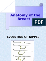 X Anatomy of the Breast