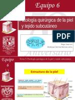 3. Patología quirúrgica de la piel y tejido subcutáneo.ppt