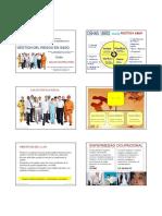 4 SALUD OCUPACIONAL_NVIOx6 (1).pdf
