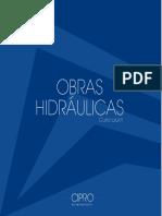 CV CIPRO Obras Hidraulicas