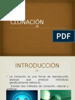 clonacinpresentacinpowerpoint-121204203101-phpapp01