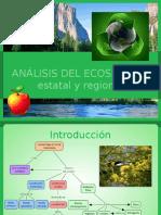 Análisis Del Ecosistema