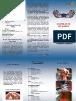 TRIPTICO PROTEGE TUS MANOS.pdf