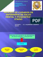 Proceso de Cuidado en Psiquiatria 2014-Unmsm