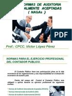 Las Normas de Auditoria NAGAs (3)