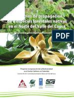 Cartilla Protocolos propagación