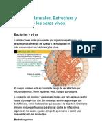 Ciencias Naturales.docx LOS VIRUS