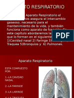 Cavidad Nasal-anatomia