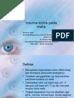Trauma Kimia Mata
