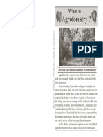 4_agroforestry.pdf