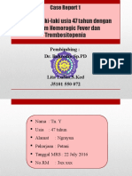 PPT Case 1 DHF.pptx