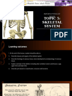 Topic 6-Skeletal System