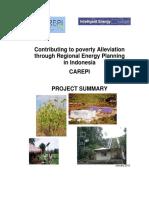 Carepi Project Summary