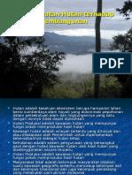 Strategi Pengelolaan Dan Pengembangan Hutan Rakyat