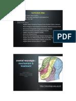 cranial_neuralgia_keynote.pdf