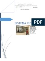 SISTEMA IBIS.docx