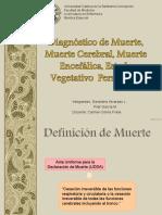 Diagnostico de Muerte - Estado Vegetativo Persistente