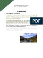 NOMBRE humedales.docx