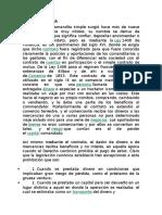 SOCIEDAD POR COMENDITA SIMPLE.docx