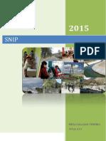 Resumen SNIP.pdf