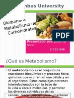 Metabolismodeloscarbohidratos 110825025517 Phpapp02 1