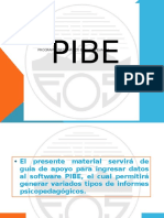 Introducción Pibe 2014