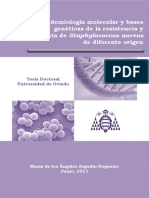 Tesis Doctoral M.A. Argudín 2011