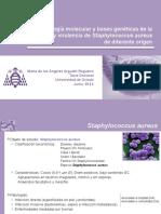 Presentación Tesis Doctoral  21-6-11