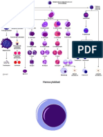 PPT Toolkit Biology 01 Cell