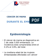 10.- CA Mama Embarazo
