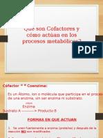 Que Son Cofactores y Como Actuan en Los Procesos Metabolicos.ppt (1)