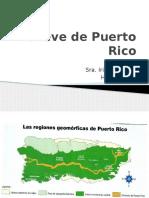 Relieve de Puerto Rico 7mo