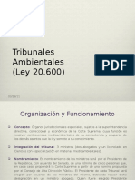 POWER POINT TRIBUNALES MEDIO AMBIENTE (0313882).pptx