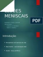 Lesões Meniscais.pptx