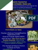 22_10_2013_-_Mesa_Redonda_-_Projeto_Tejucactus_-_Roberto_Jun_Takane (2) (1).pdf