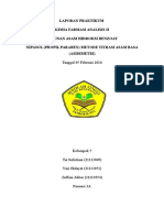 Laporan Praktikum KFA II Nipasol