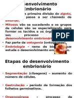 20120319061942_embriologia