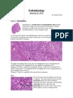 Botond-Pathohisto-Semester-II-red.pdf