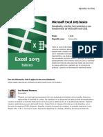 Microsoft Excel 2013 Basico