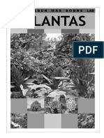 Para Saber Mas Sobre PLANTAS (1)