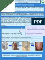 anfotericina laca.pdf