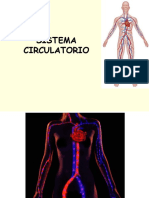 2. Power Point Sistema Circulatorio.