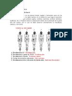 Test Posturología Clínica